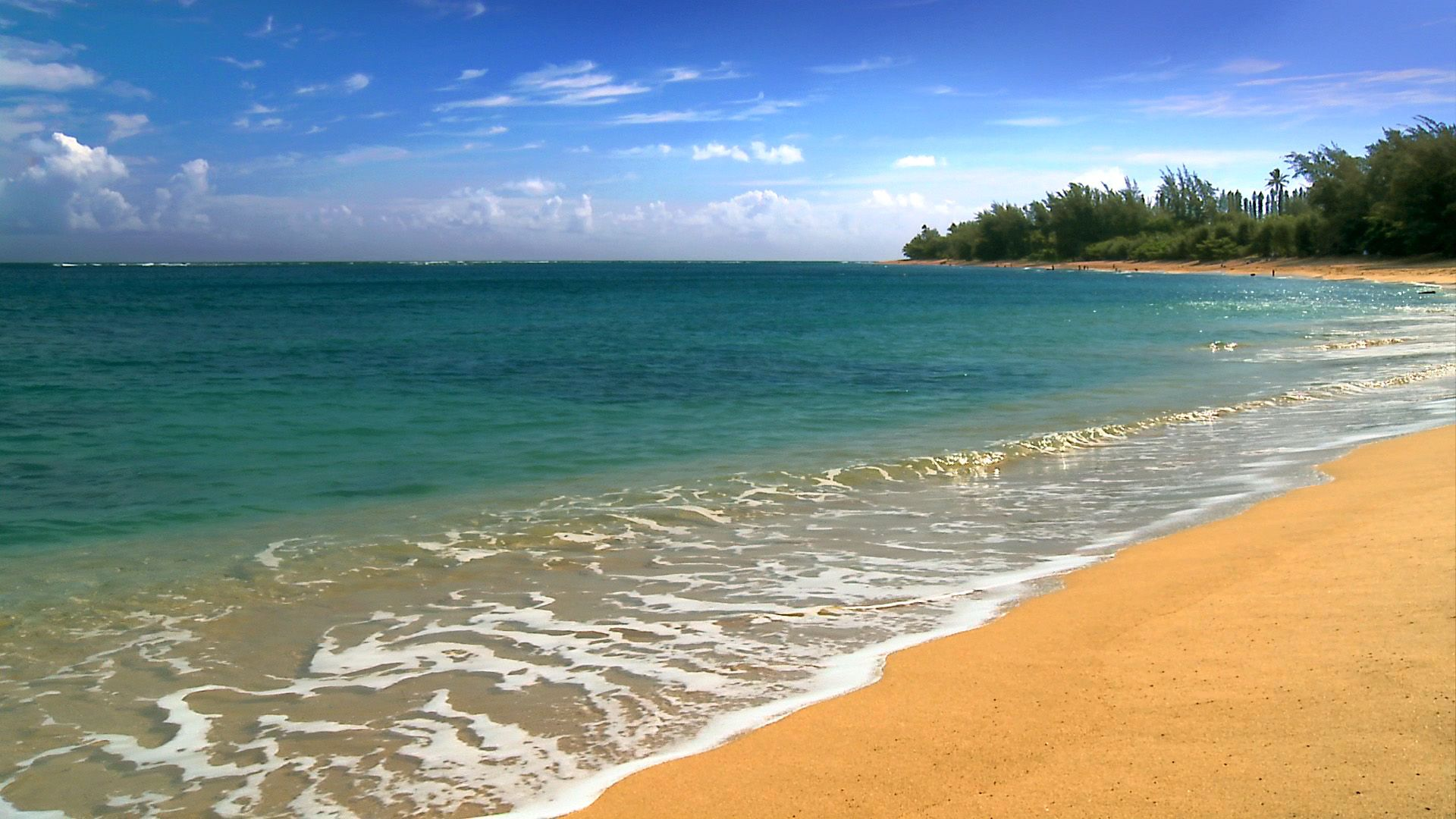 Hawaii Beaches Bing Images