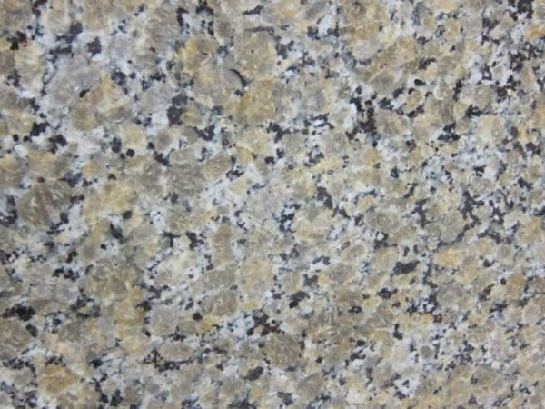 Beige Butterfly Granite Horton2 Bar Countertops House