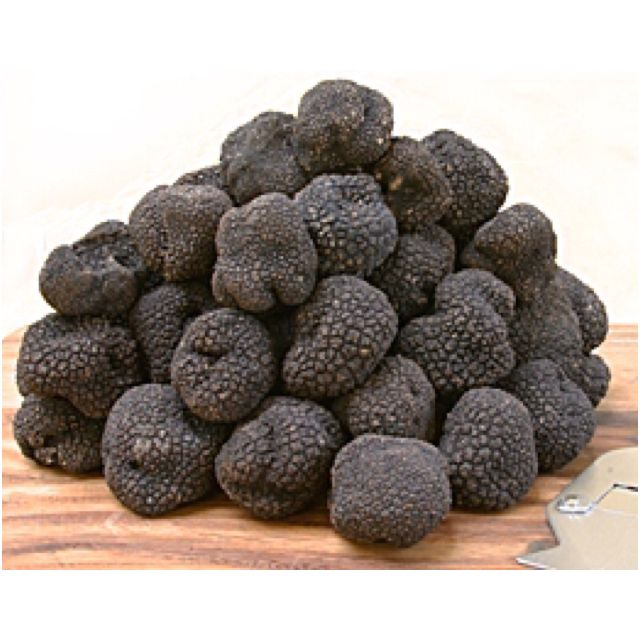 Black Truffles #fungi #mushrooms #truffles