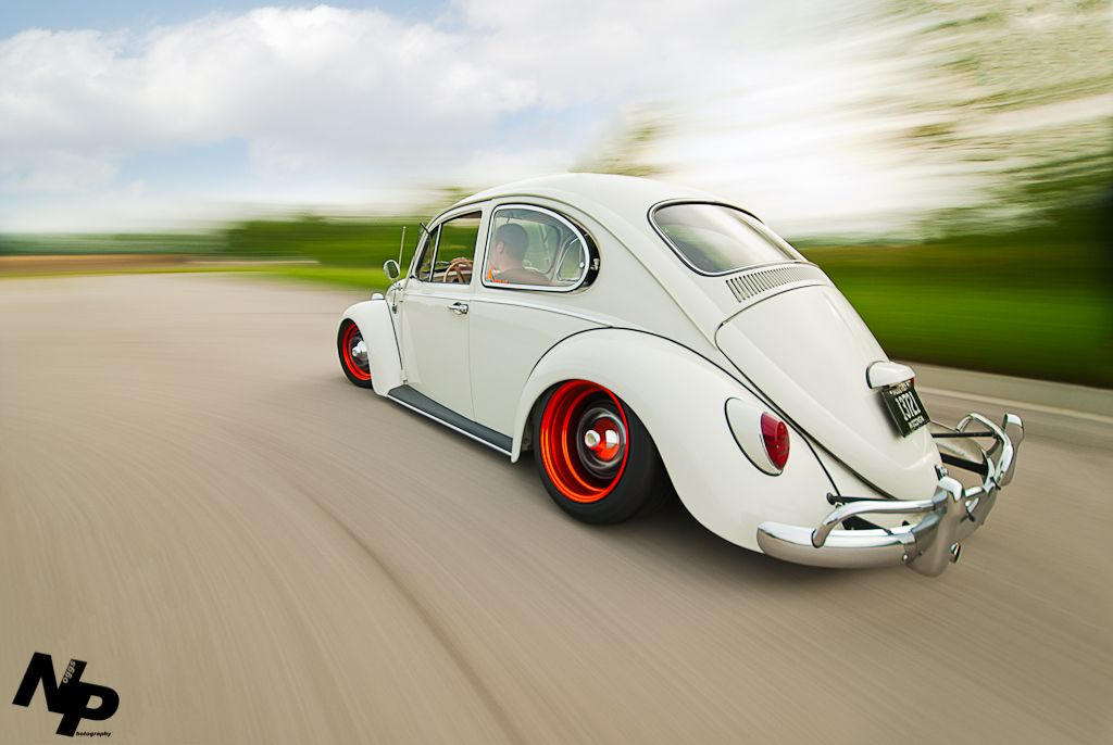 Käfer- Bug...<3