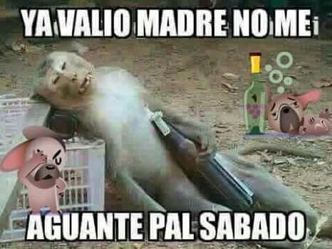 Pin By Lulu Gardea Farias On Memes Funny Spanish Jokes Funny Spanish Memes Funny Emoticons