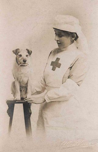 WWI Nurse. Love this photo of a nurse with her (?) dog