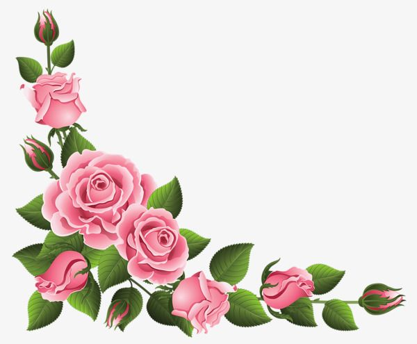 Pink Rose Border Rose Clipart Lace Flowers Png Transparent Clipart Image And Psd File For Free Download Clip Art Borders Flower Art Flower Painting