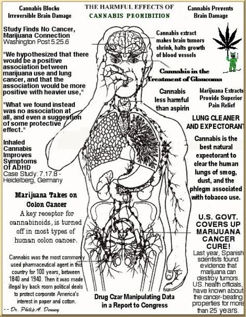 cause and effect medical marijuana Proponents state that marijuana has valid medical uses and further research should be pursued, while opponents list concerns about health risks, and the gateway effect of marijuana that can lead to more dangerous drug abuse, among other issues.