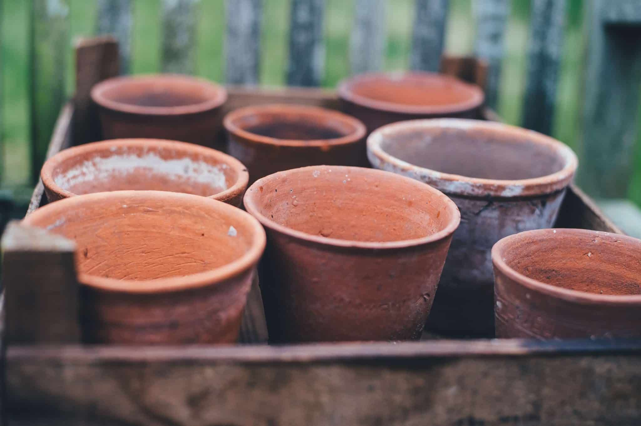 The Complete Guide To Growing Strawberries in Containers #growingstrawberriesincontainers Growing strawberries in pots is an easy way to enjoy fresh fruit even if you don't have a large yard. Read on and learn with complete how-to steps for growing strawberries in containers. #growingstrawberriesincontainers