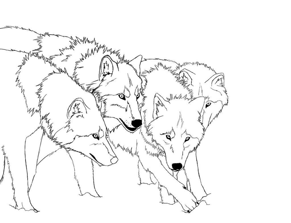 coloring pages wolves - photo#10