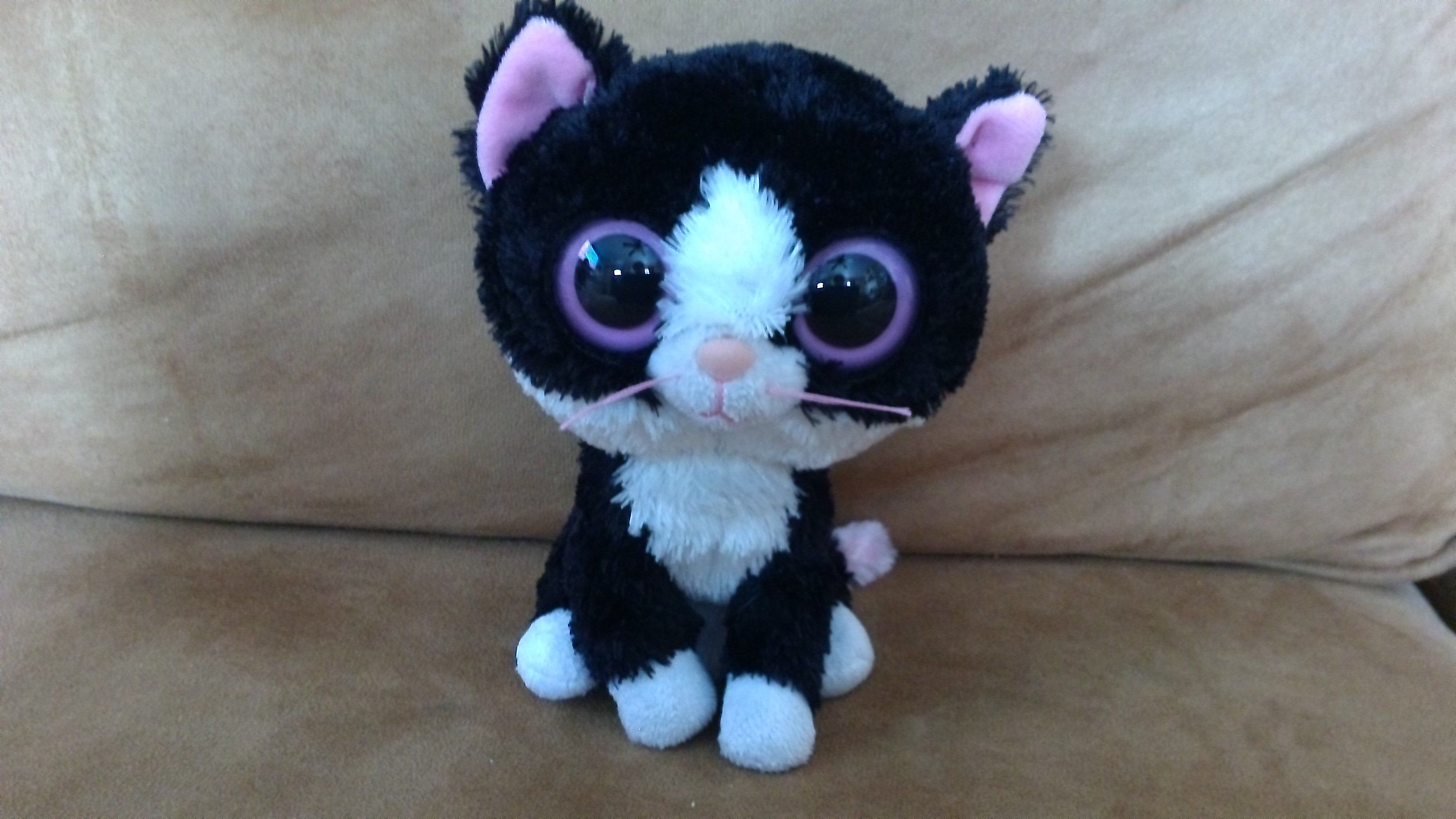 This is my little beanie boo cat her name is Pepper and her birthday is  December 10th so she s 1 right now do you like her  30627f8e380