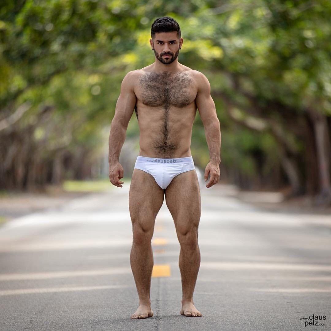 Furry hitchhiker