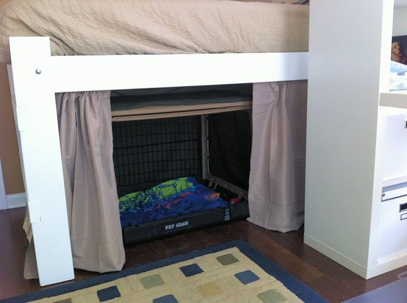 This Customer Placed A Dog Crate Underneath Junior Loft Beds Animal Room Home N Decor