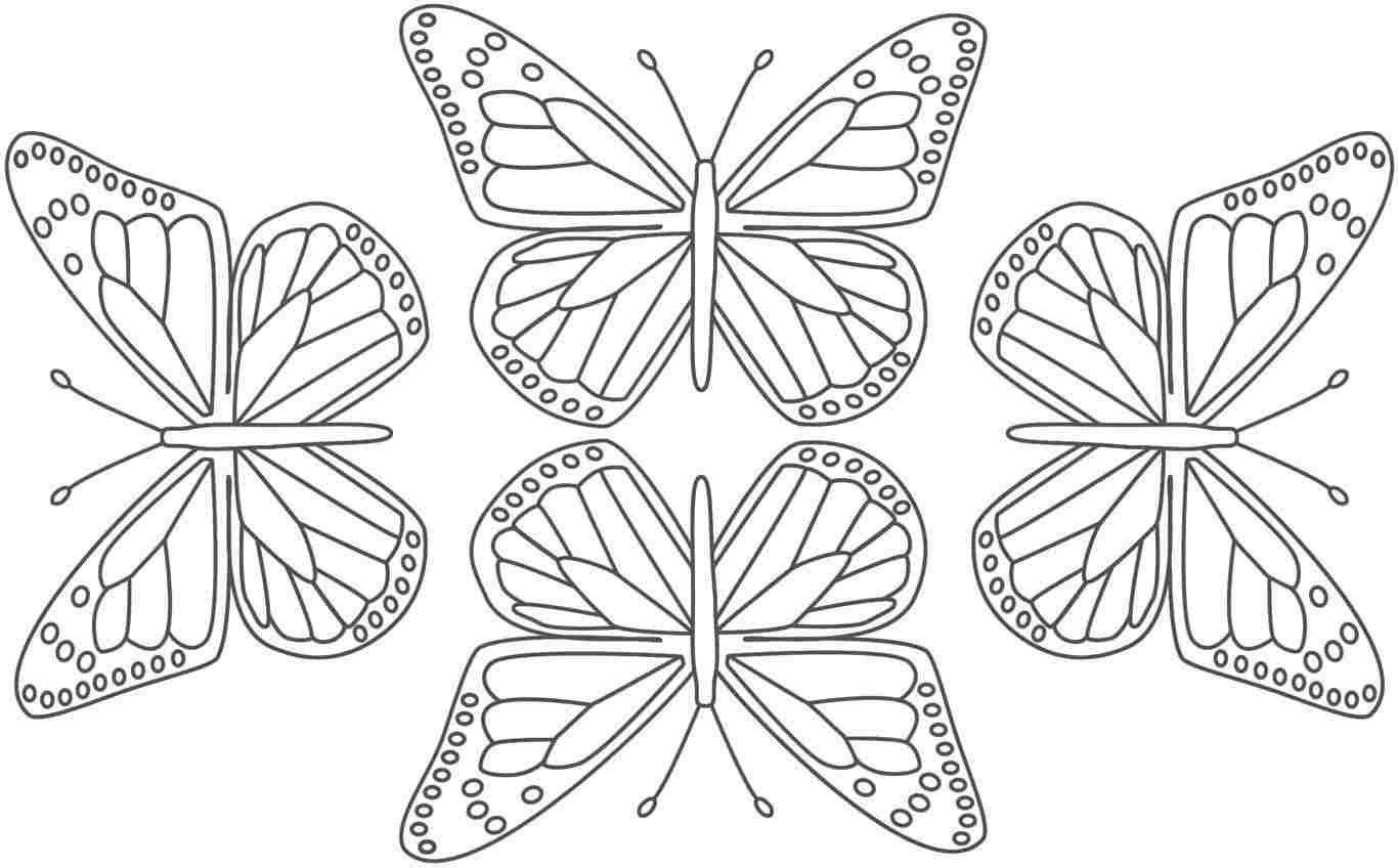 Butterfly Worksheets For Kindergarten Free Butterfly