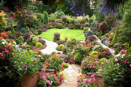 Beautiful Suburban Garden