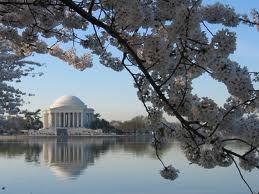 Washington,D.C.☆