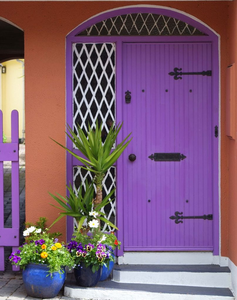 A Rather Nice Kilkenny Door 玄関 ドアノブ ドア