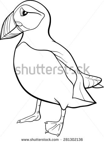 Black And White Cartoon Vector Illustration Of Atlantic Puffin