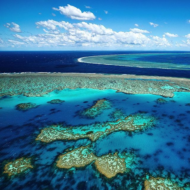 Great Barrier Reef, Barrier Reef