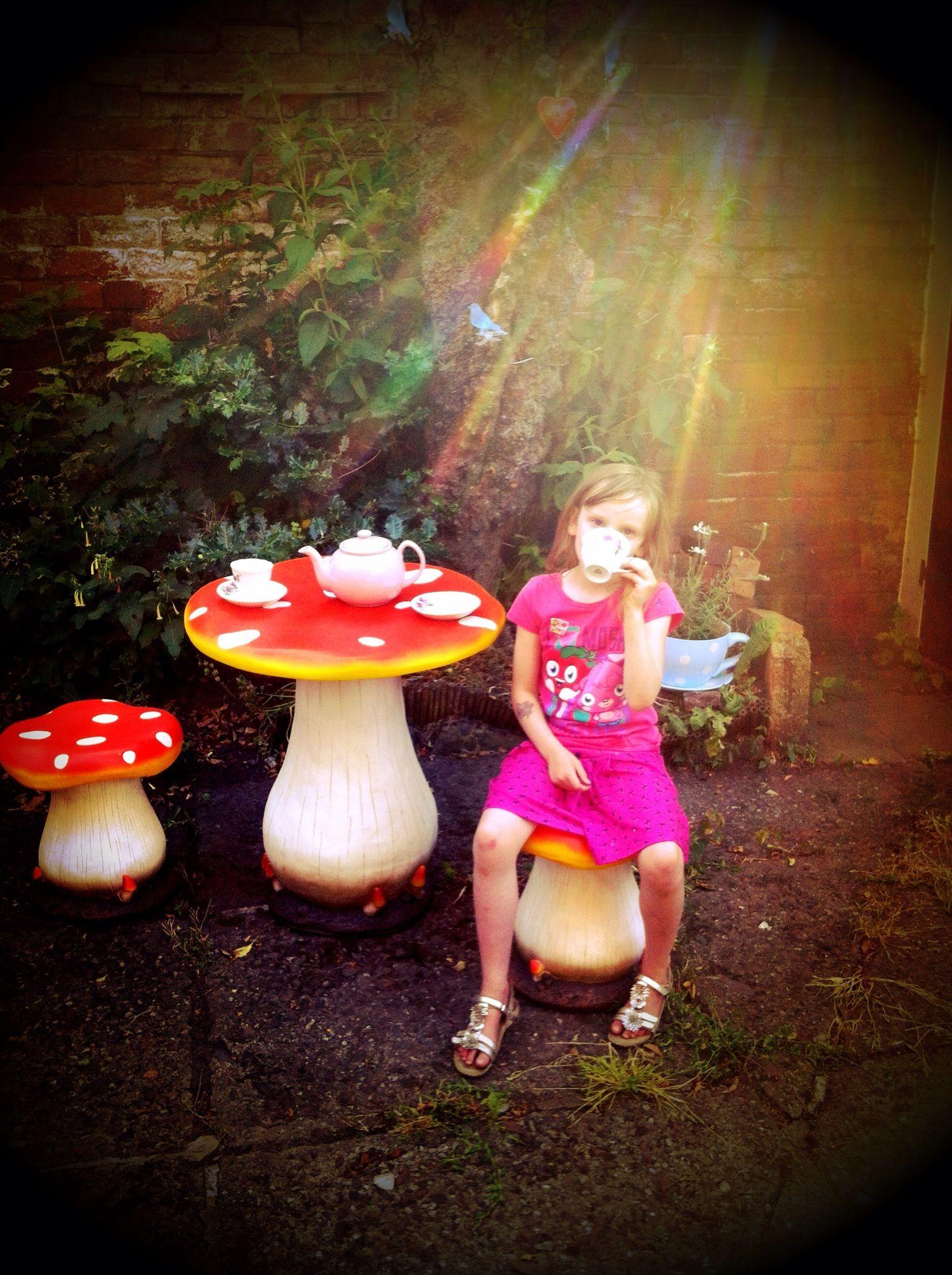 toadstool table chairs alice in wonderland garden theme dream garden pinterest gartenideen. Black Bedroom Furniture Sets. Home Design Ideas