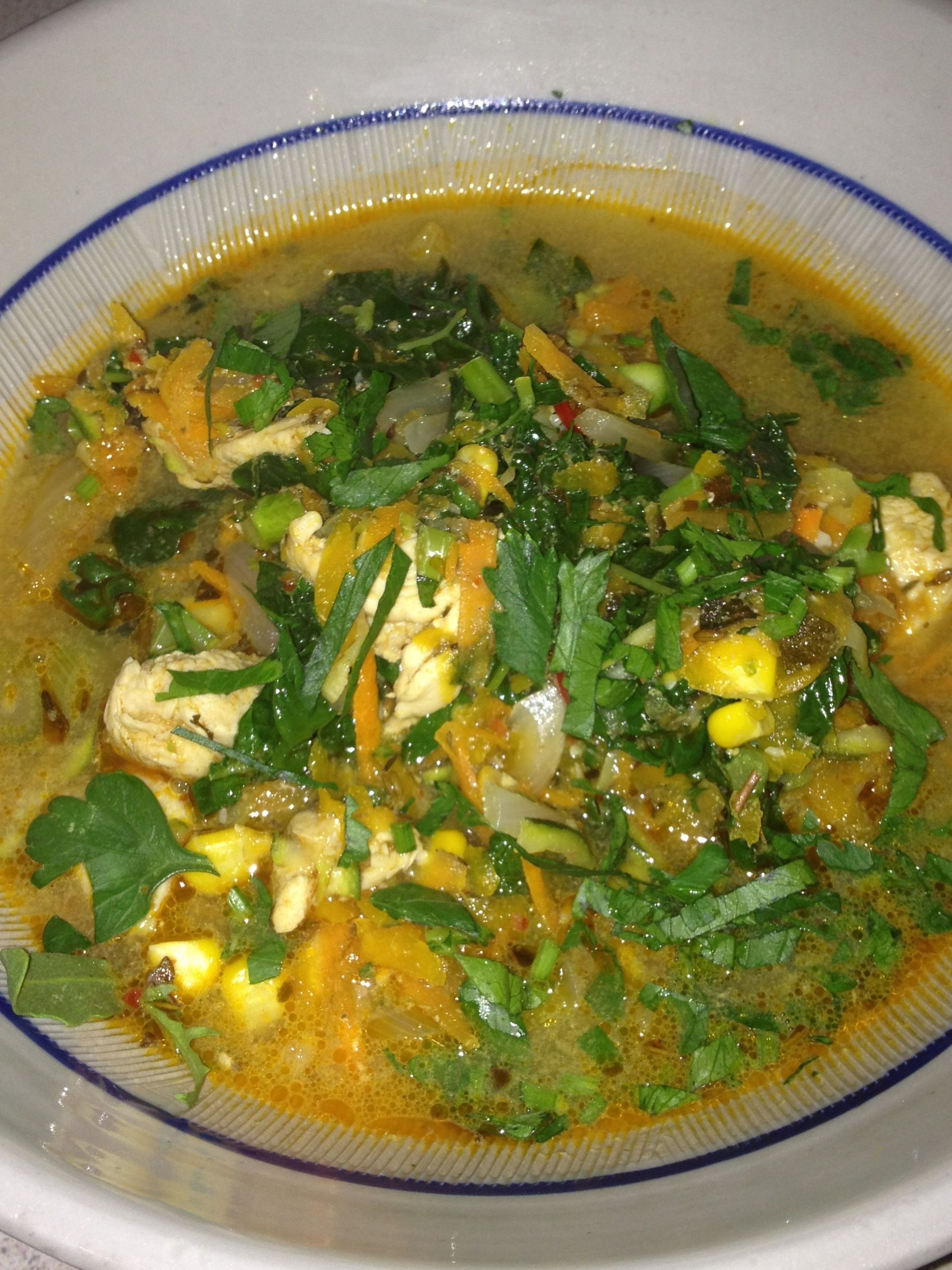 mexican spiced chicken & vegetable soup