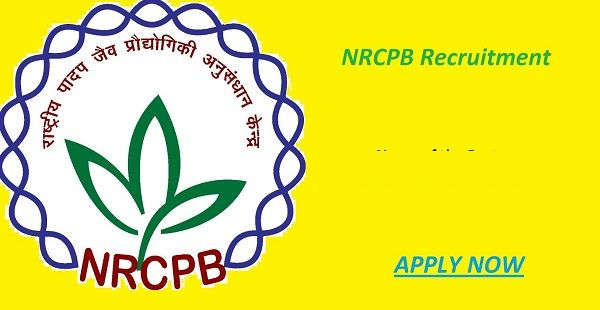 NRCPB Recruitment for the posts of Young Professional-ΙΙ, Project - project assistant sample resume
