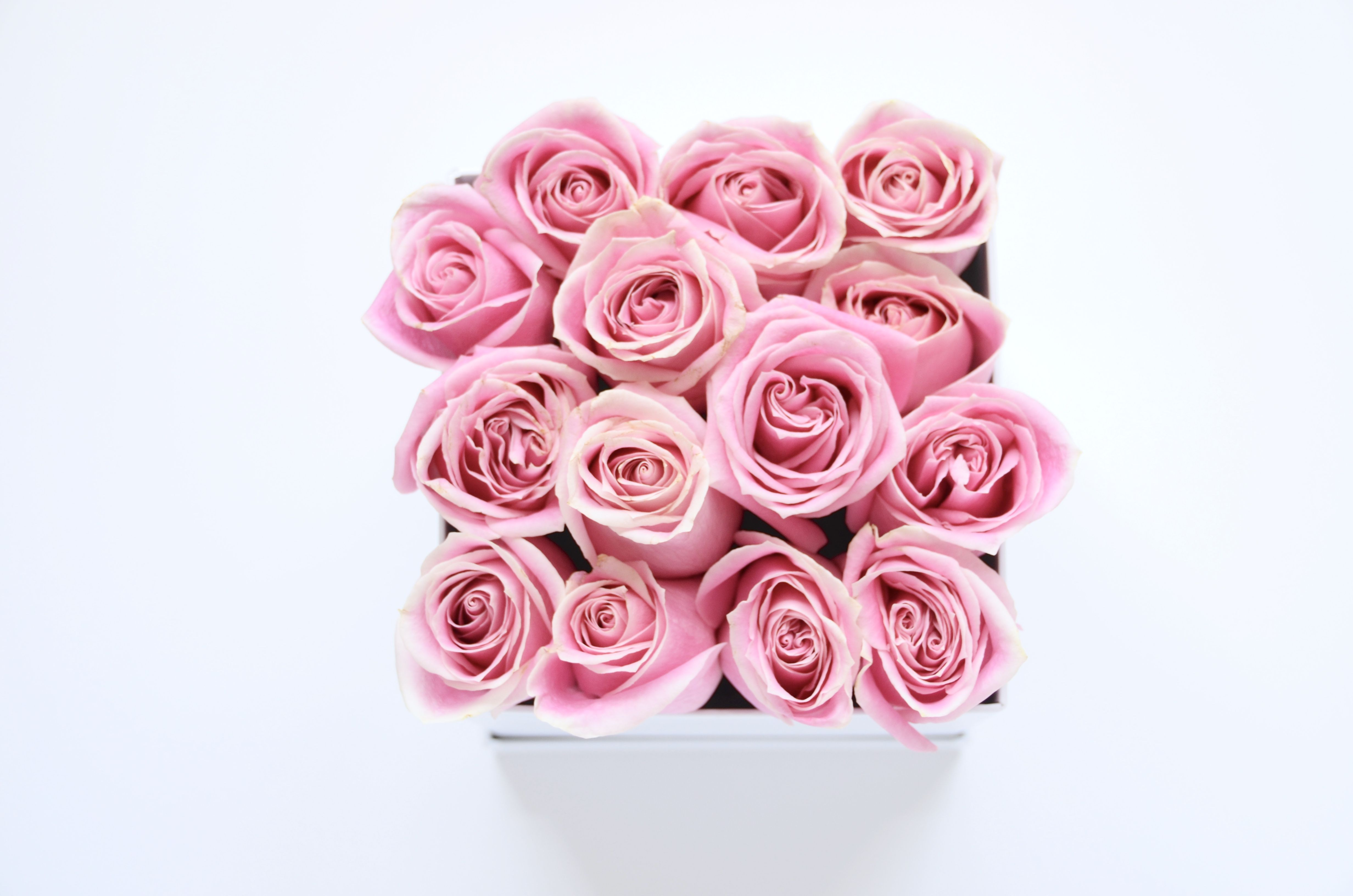 Stunning little pink rose bouquet in a charming little white box ...