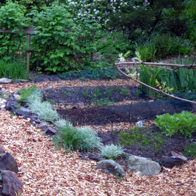 Raised Beds in Your Edible Garden | Landscaping | Pinterest | Raised on concrete raised garden beds designs, brick and concrete center designs, concrete raised flower bed designs, raised bed vegetable garden designs,