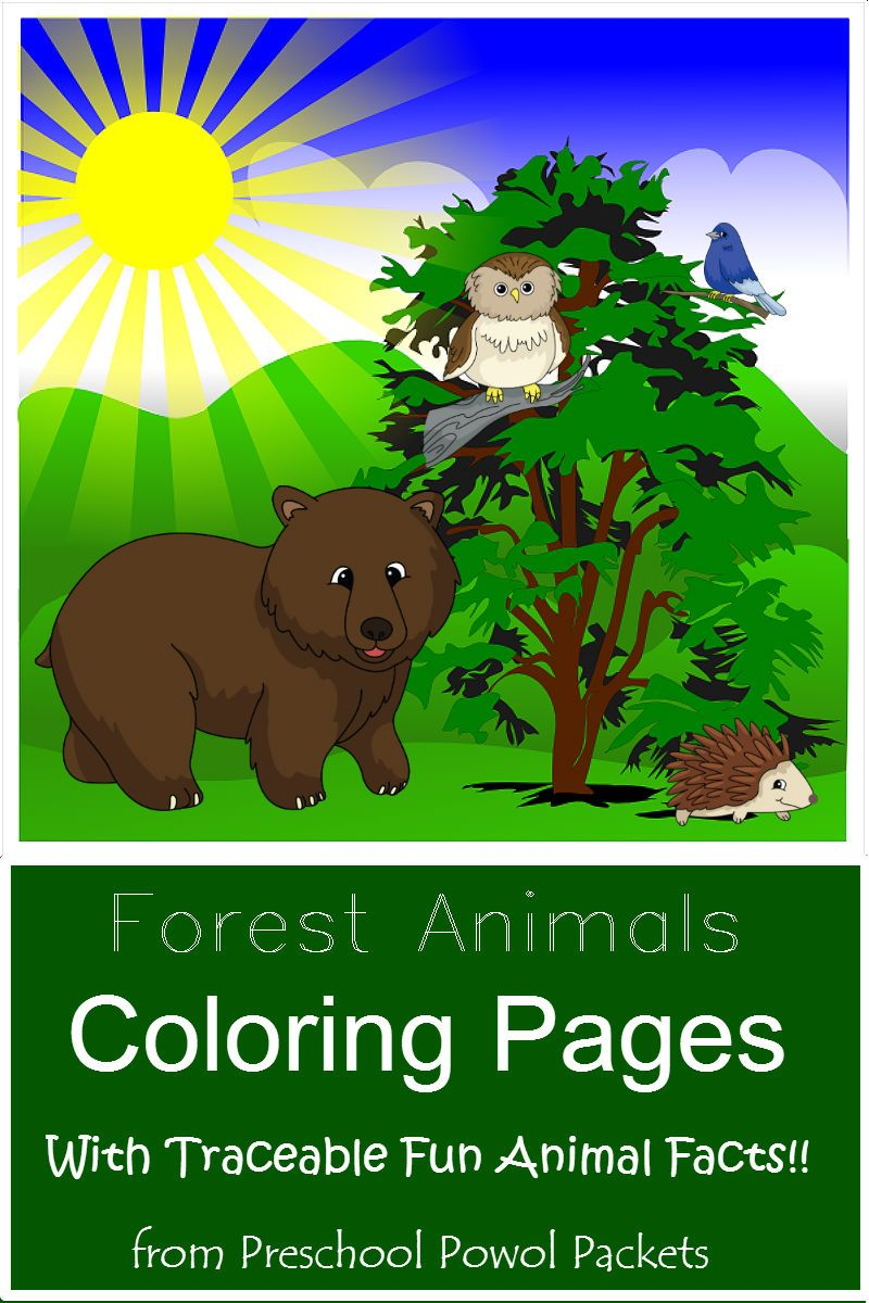 FREE} Forest Animals Coloring Pages with Traceable Fun Facts ...
