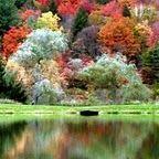 Waitsfield, VT pond