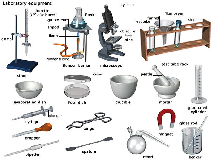 Laboratory Tools | laboratory - Definition and pronunciation ...
