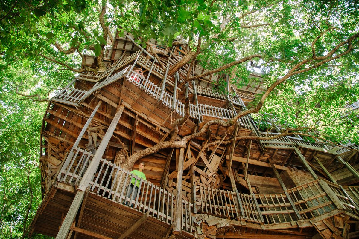 worlds largest treehouse for le monde