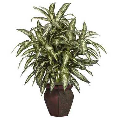 Decortaive Vase Silk Plant N261NEN6673 is part of Plant decor Desk - Decortaive Vase Silk Plant No matter how you word it, this is one spectacular explosion of greenery! From its multicolored leaves that seem to shower down from every possible angle, to its striking composition, this Aglaonema is great for any home or office environment, or anywhere else you can think of for that matter  Complimented by a fantastic twotone vase, this is one silk plant where you simply cant go wrong! Complimented by a fantastic twotone vase, this is one silk plant where you simply cant go wrong! 0 Colors Green Pot Size W 6 in, H 5 75 in Looks so real, they're Nearly Natural Complimented by a fantastic twotone vase, this is one silk plant where you simply cant go wrong!Colors GreenPot Size W 6 in, H 5 75 inLooks so real, they're Nearly NaturalShipping Length 9 inch X Shipping Length 30 inch X Shipping Length 8 inch X
