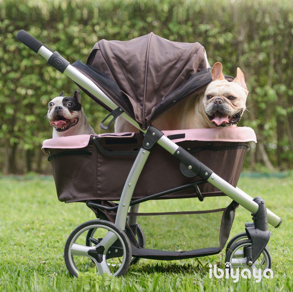 French bulldog fun rides in Elegant Retro I IBIYAYA pet