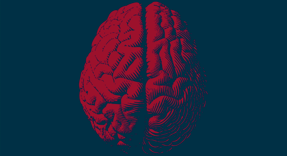 Scientists pinpoint how brain activity could be manipulated to slow aging