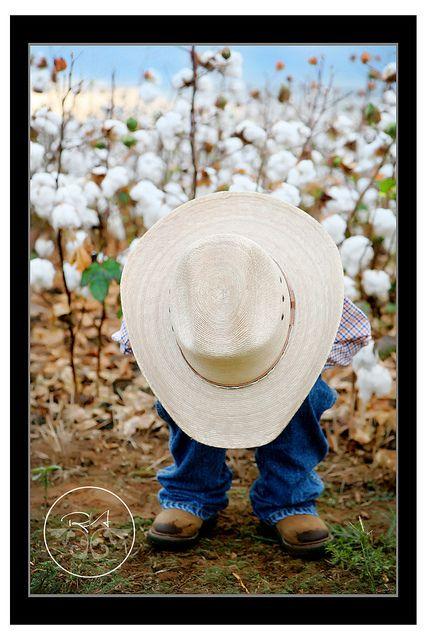 Cowboyy