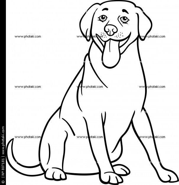 labrador perro dibujos  Buscar con Google  Perros aplicaciones