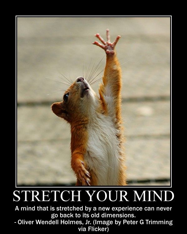 Stretch Your Mind Quotes Quotes Quotes Motivational Posters