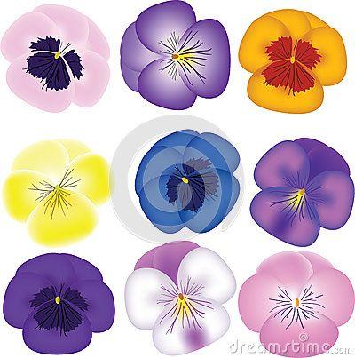 Pansies Set Royalty Free Stock Images - Image: 28279669