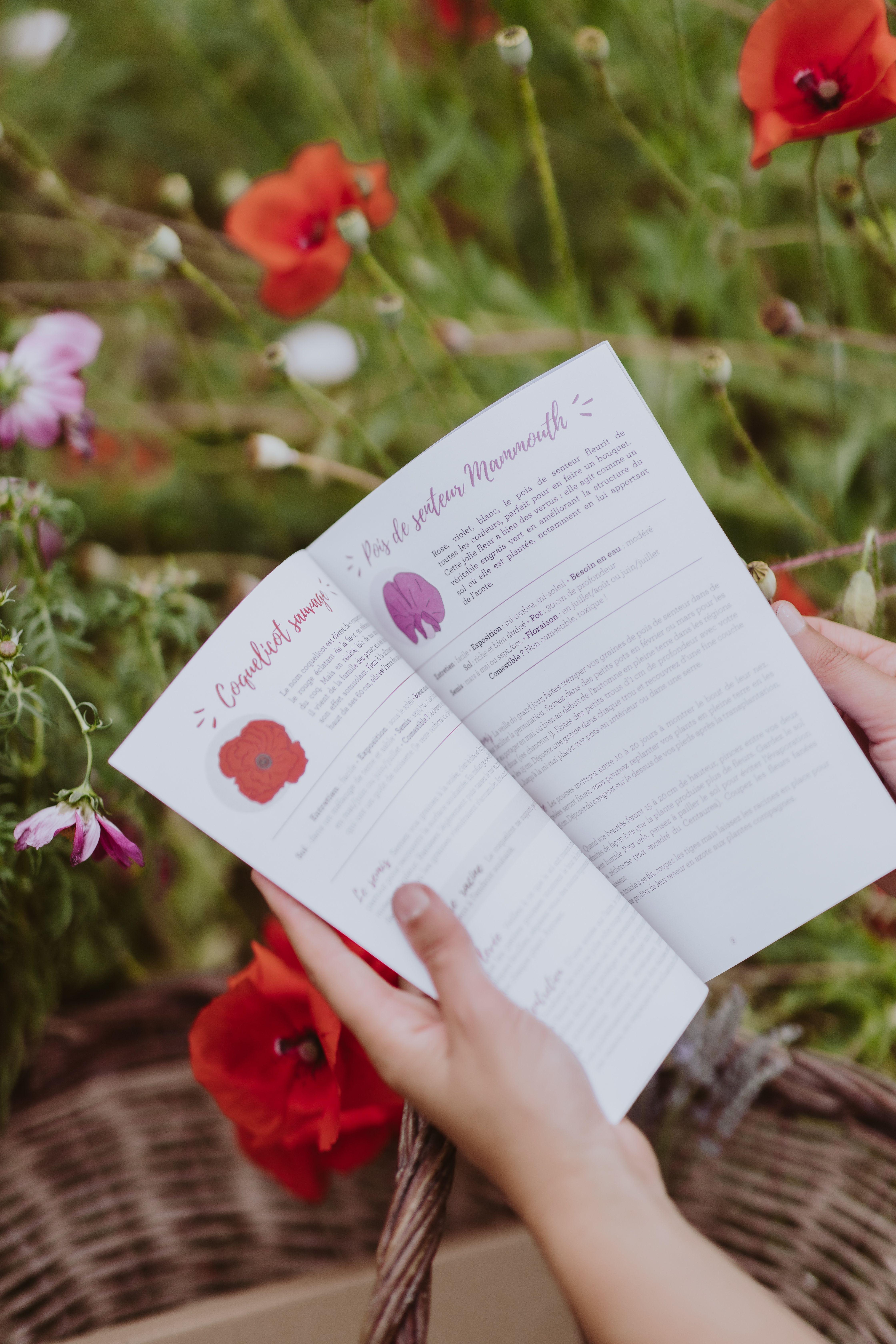 """Planter Des Coquelicots Dans Son Jardin le coffret de graines de fleurs """"flower power"""" à cultiver au"""
