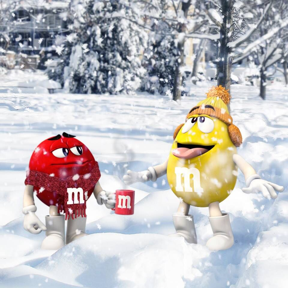 Red & Yellow playing in the snow!