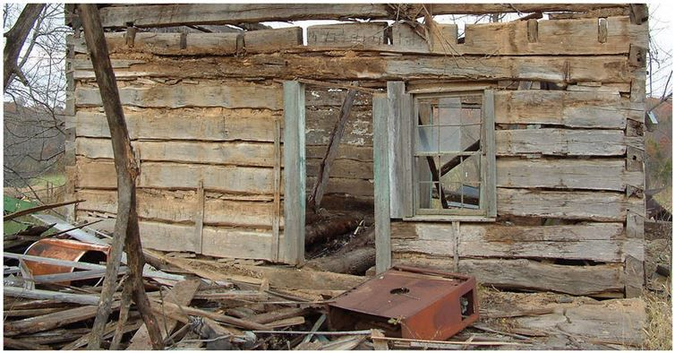A Retired Mathematician Found An 1830s Cabin In The Woods What He