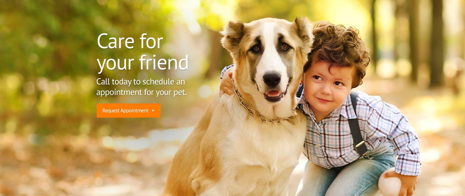 Saugus Animal Hospital Veterinarian In Saugus Ca Usa Home Pet Clinic Animal Hospital Veterinary Hospital