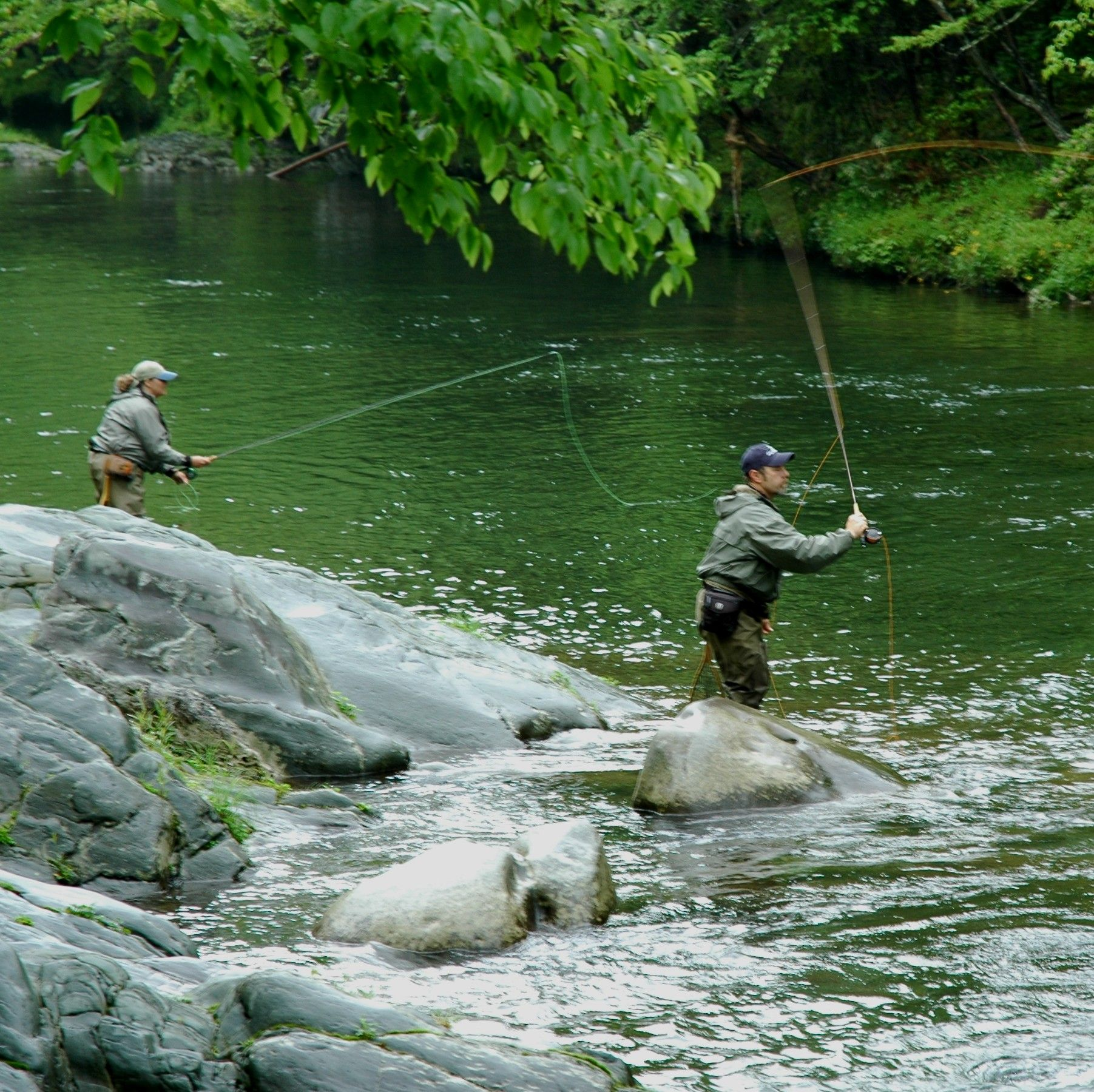 Fishing in the Smoky Mountains