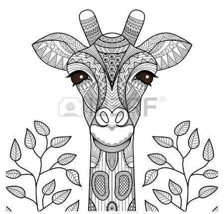 Cabeza de jirafa Zentangle de la página para colorear, diseño de la ...