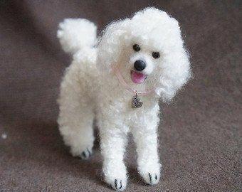 #hikingdogwithdogsofinsta #mountaindog #hikingdogs bestdogever #pupper#woofer #woofergram #ilovemydoggy