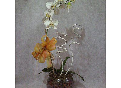 Floricultura e Coroa de Flores João Gualberto