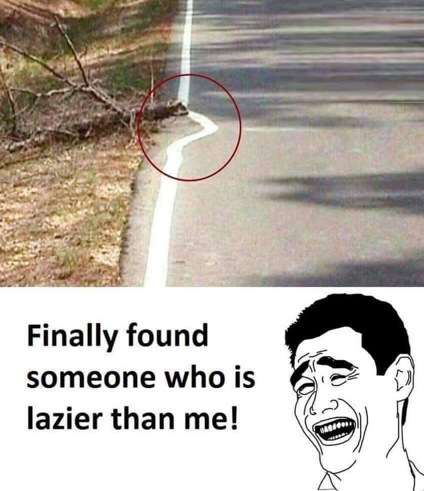 These 47 Funniest Memes Will Make You Laugh Out Loud Really Funny Joke Very Funny Jokes Extremely Funny Jokes