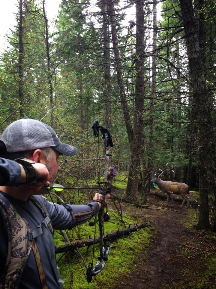 Last Minute Elk Hunting Prep Archery elk hunting, Elk