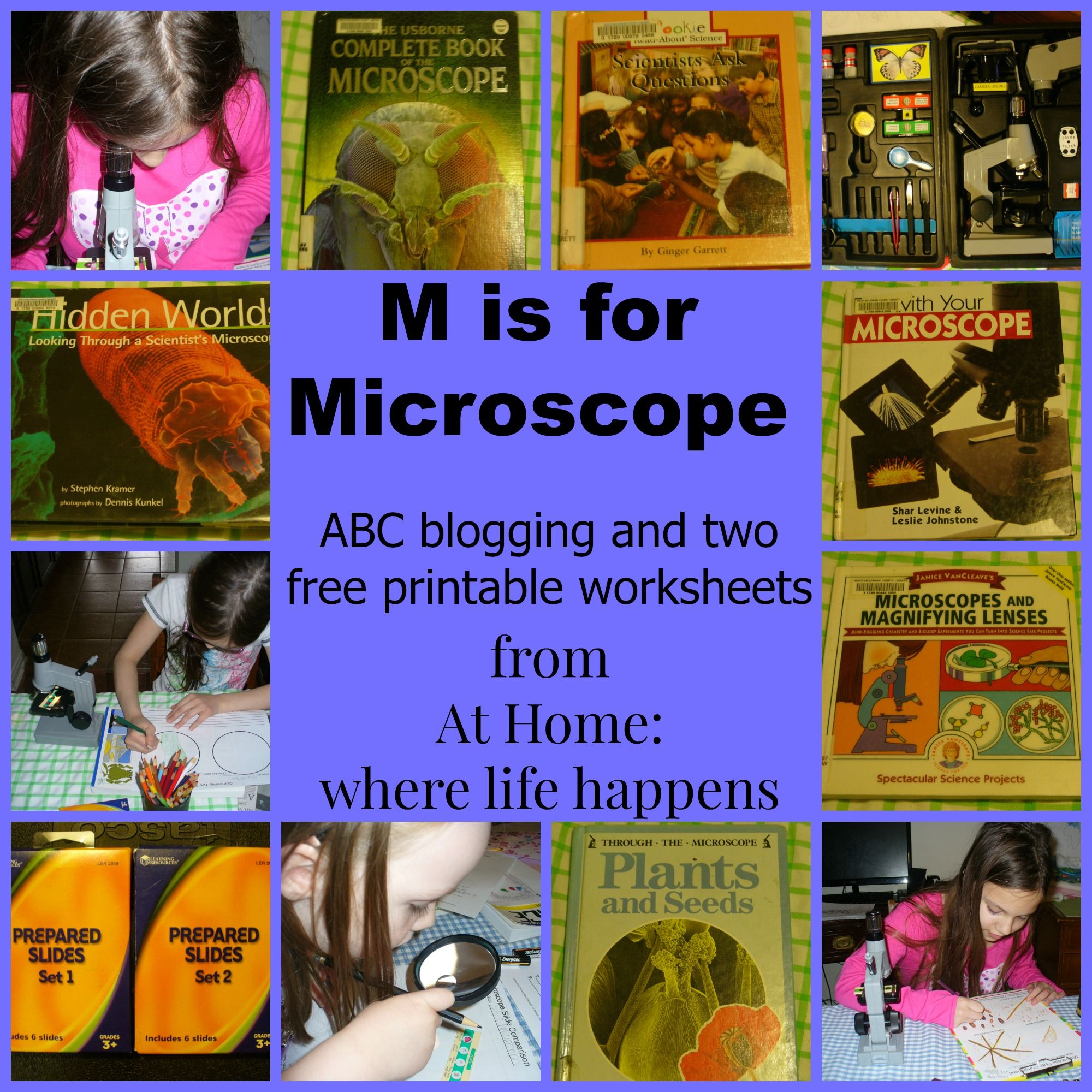 M Is For Microscopes With Images