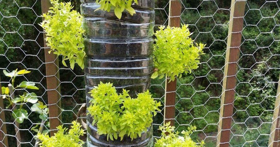 c mo hacer un jard n vertical con botellas de pl stico