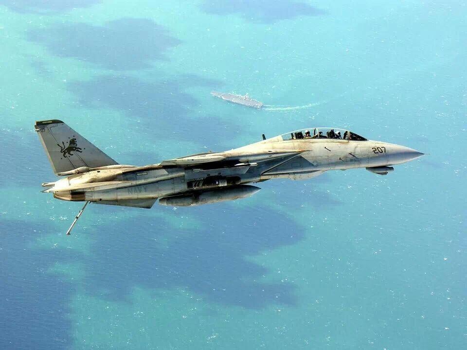 """Grumman F-14D Super Tomcat of VF-213 """"BlackLions"""""""