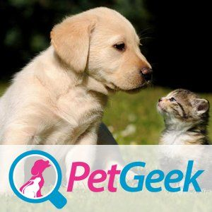 Services Provided Include Dog Walking Pet Sitting Pet Visits Tailored For Your Pet Areas Covered Doncaster Haxey And S Animals Cute Animals Dog Cat