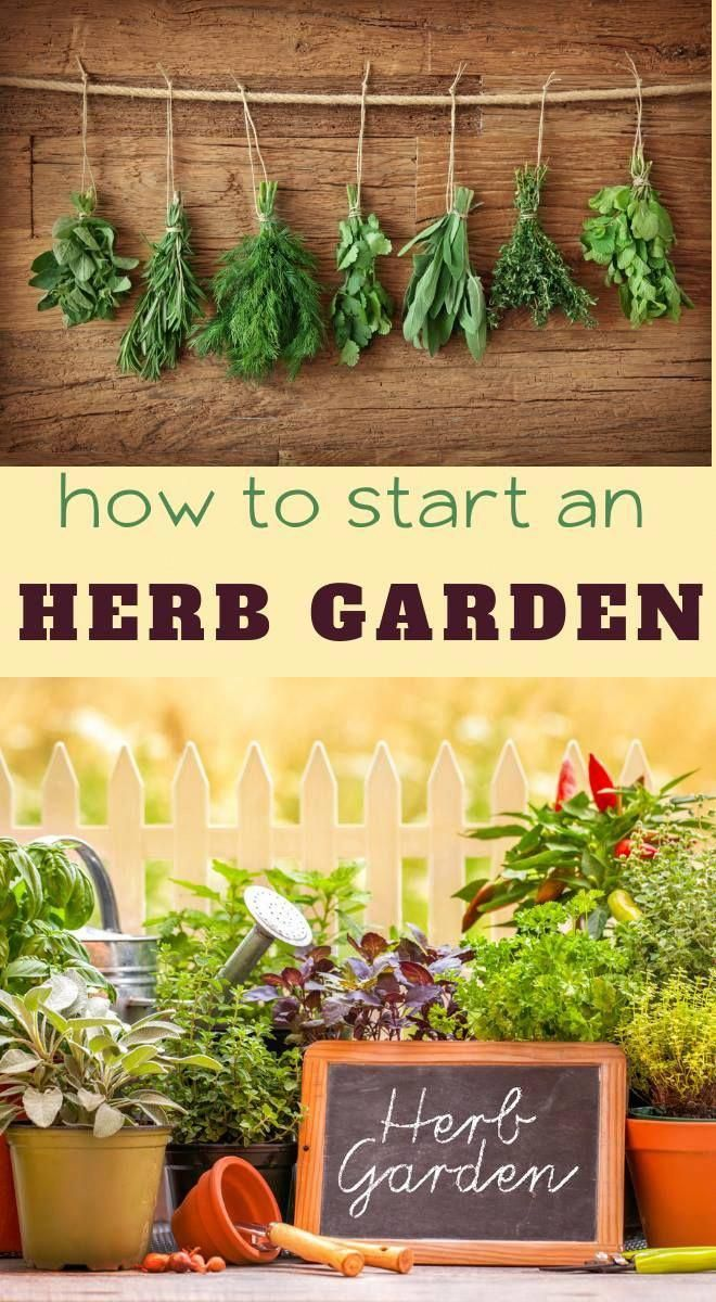 Knowing What To Plant Makes Creating An Easy Herb Garden 640 x 480